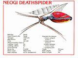 Deathspider