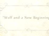 Wolf and a New Beginning