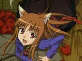List of Spice and Wolf Episodes