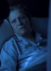 Norman Osborn (Chris Cooper)
