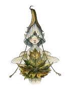 Flowerhead-1-