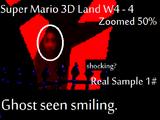 Super Mario 3D Land: Smiling Ghost