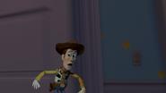 WoodyNightmareDVD2