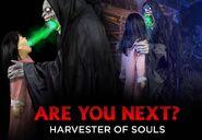 HarvestorSouls BspotM