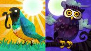 North American Splatfest Early Birds vs Night Owls
