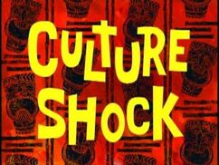 Cultureshock.jpg