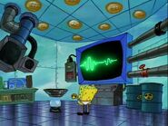 Plankton! Gallery (42)