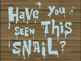Kto widział ślimaka?