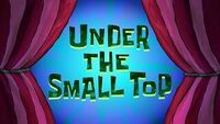 Under the Small Top.jpg