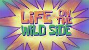 SpongeBob Music Life on the Wild Side