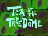 Herbatka pod Kopułą