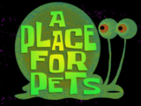A Place for Pets