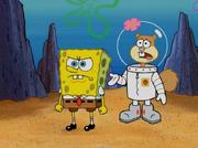 SpongeBob & Sandy - Karate Island.