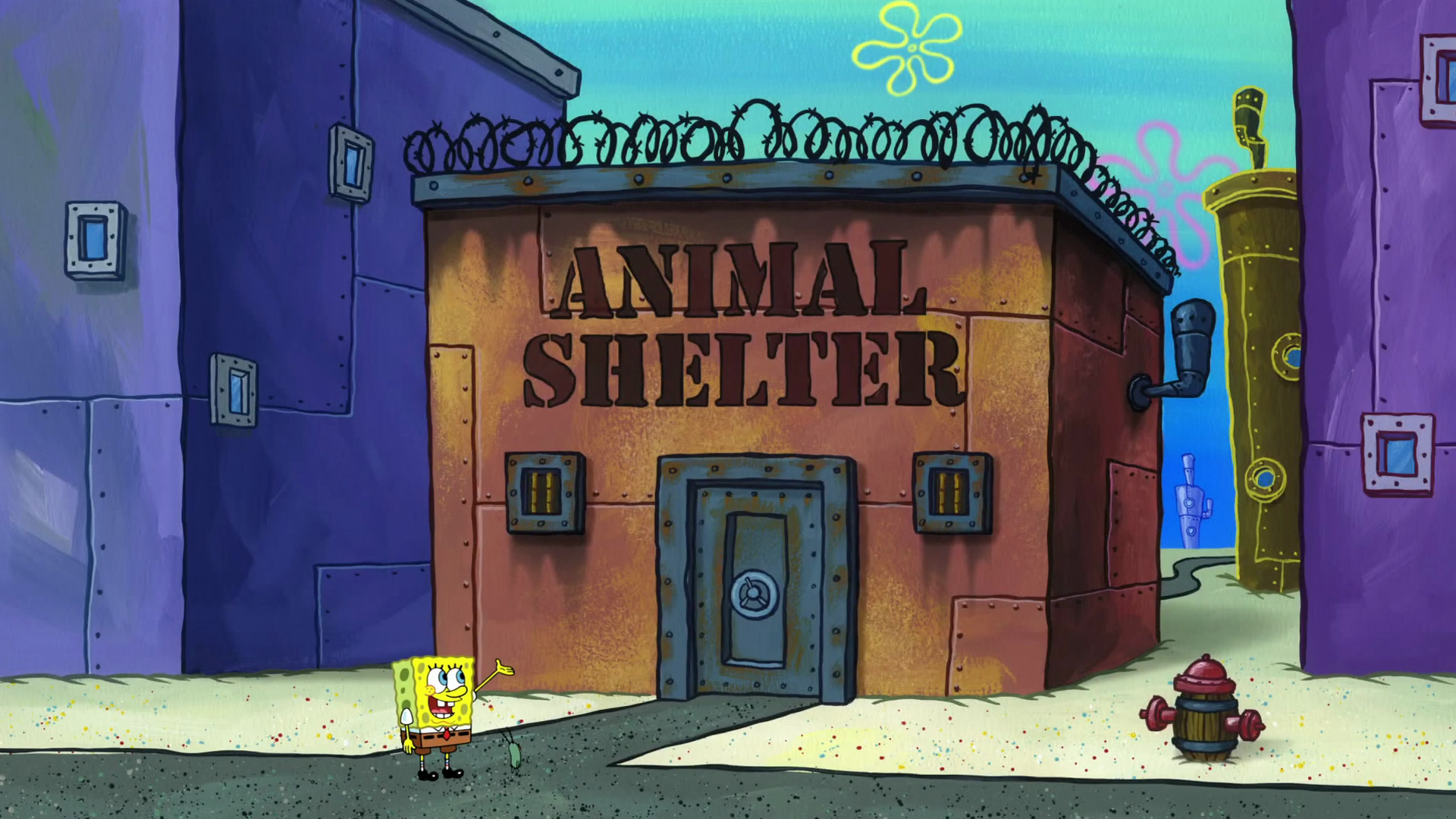 Animal shelter/gallery