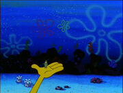 Plankton! 060