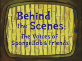 Behind the Scenes: The Voices of SpongeBob & Friends