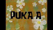SpongeBob Music- Puka A