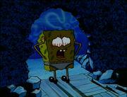 Plankton! 129