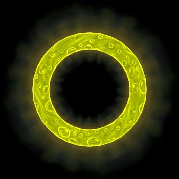 Yellow (Movie)