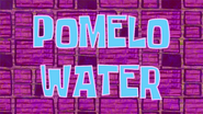 Pomelo Water title card by Egor
