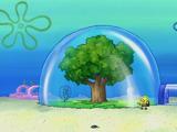Sandy's huis