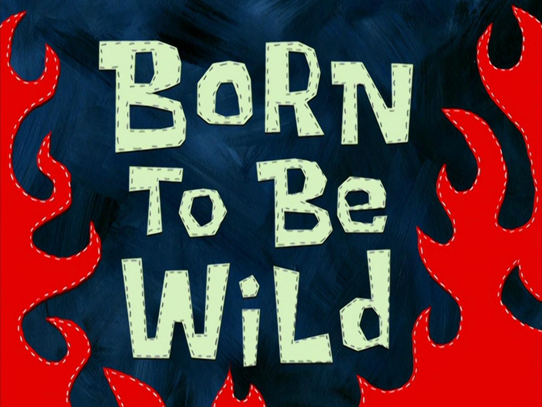Born to Be Wild/transcript
