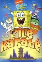 L'ileKarate DVD