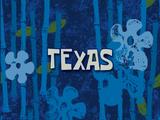 Texas (voice-over)