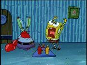 Spongebob screams at mr