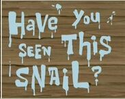 Have You Seen This Snail Title Card.jpg