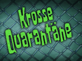 Krosse Quarantäne (Episode)