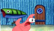Patricktexascel