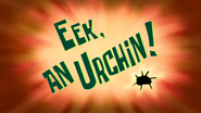 Eek, an Urchin! title card