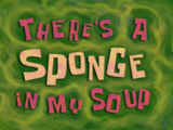There's a Sponge in My Soup