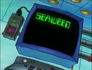 Plankton! 158
