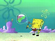 Bubble Buddy 020