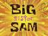 Big Sister Sam title card.png