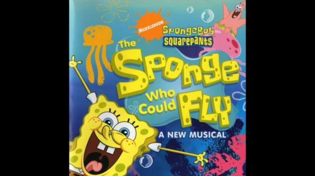 The Flying Sponge