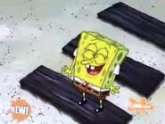 Funny pants new