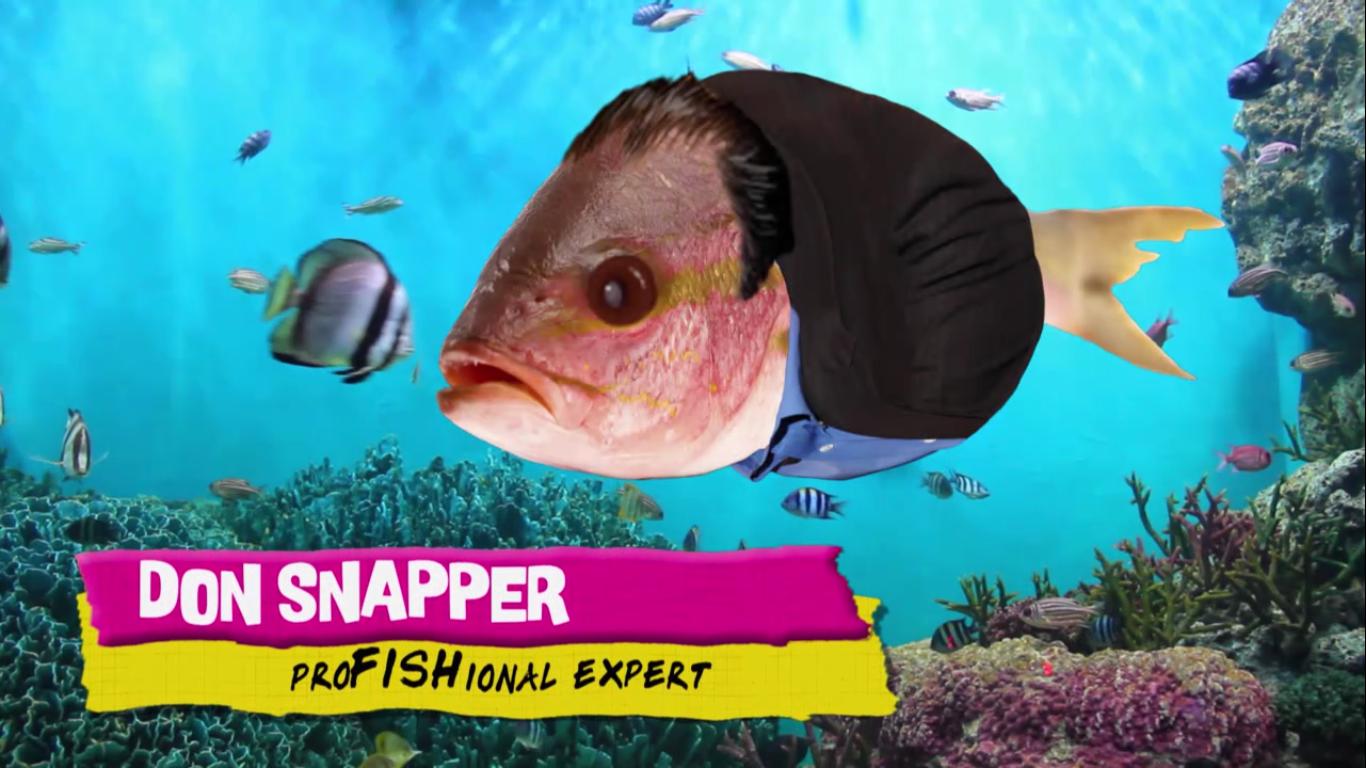 Don Snapper