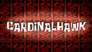Cardinalhawk friend card by Egor