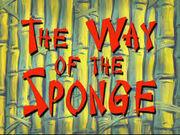 The way of sponge.jpg
