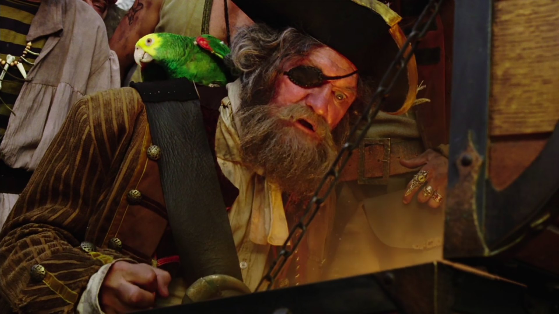 Captain Bart the Pirate/gallery