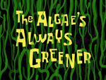 The Algae's Always Greener title card.png