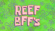 Reef BFF's (short)