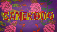 Sanek009 title card by Egor
