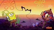 Sunday SpongeDay-The String Promo