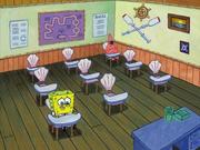 New Student Starfish 160