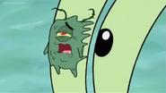 Plankton Squished