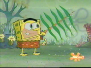 2006-02-20 2030PM SpongeBob SquarePants